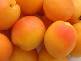 Albicocca: frutto della bellezza - Nutrizionista Bologna