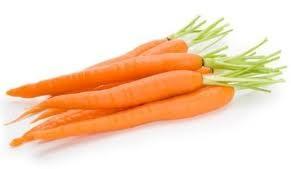 La Carota o Daucus carota L. - Nutrizionista Bologna