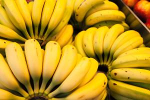 nutrizionista bologna banana